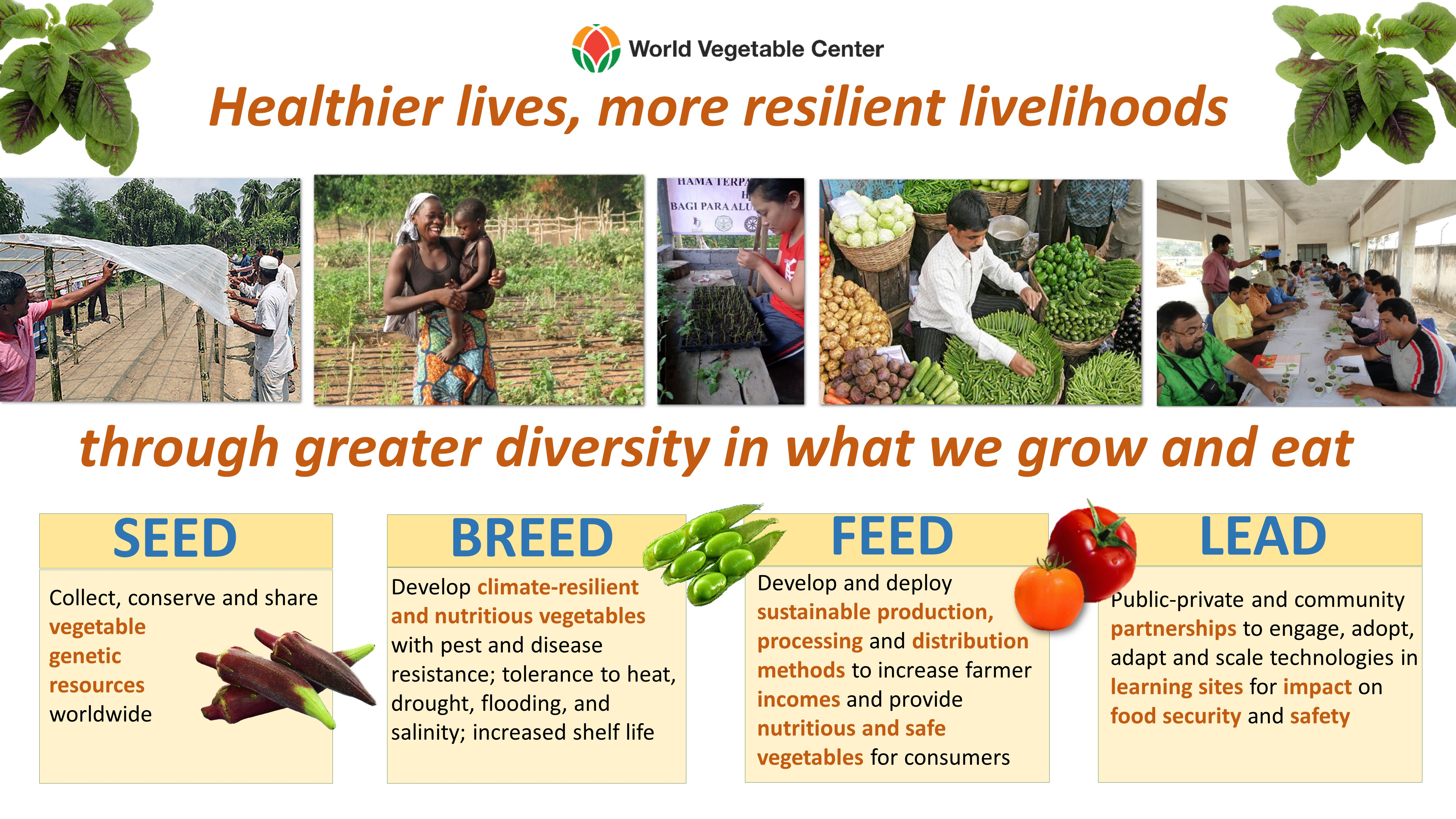 Healthier Lives, More Resilient Livelihoods