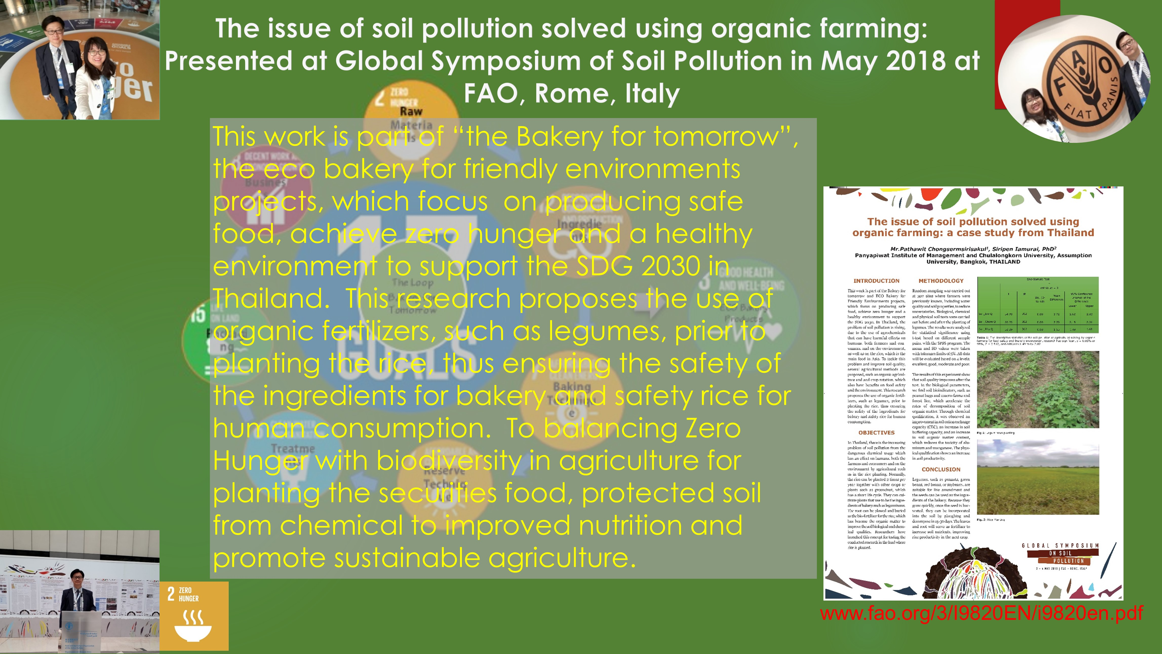 The Issue of Soil Pollution Solved Using Organic Farming