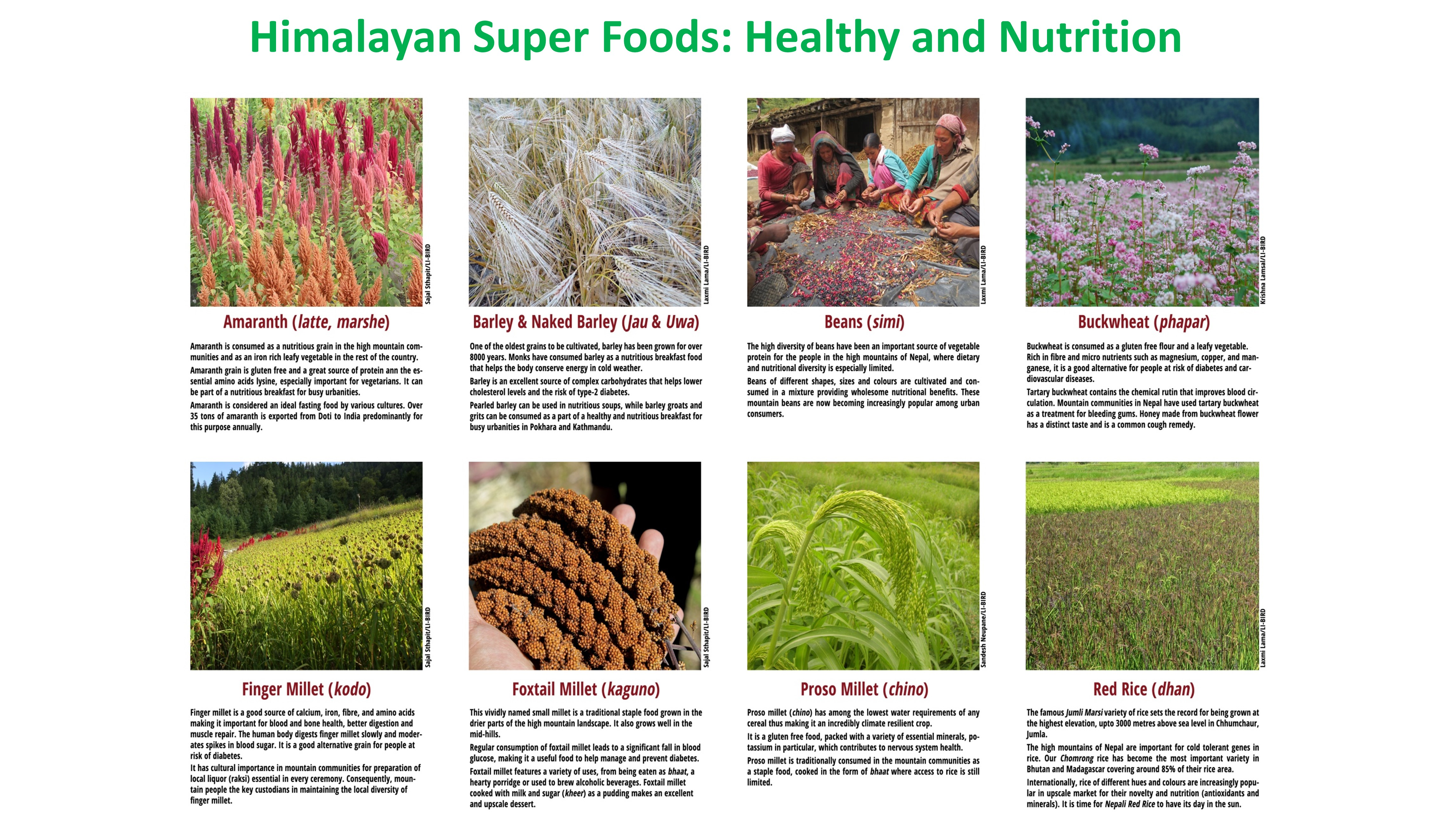 Himalayan Super Foods: Healthy and Nutrition