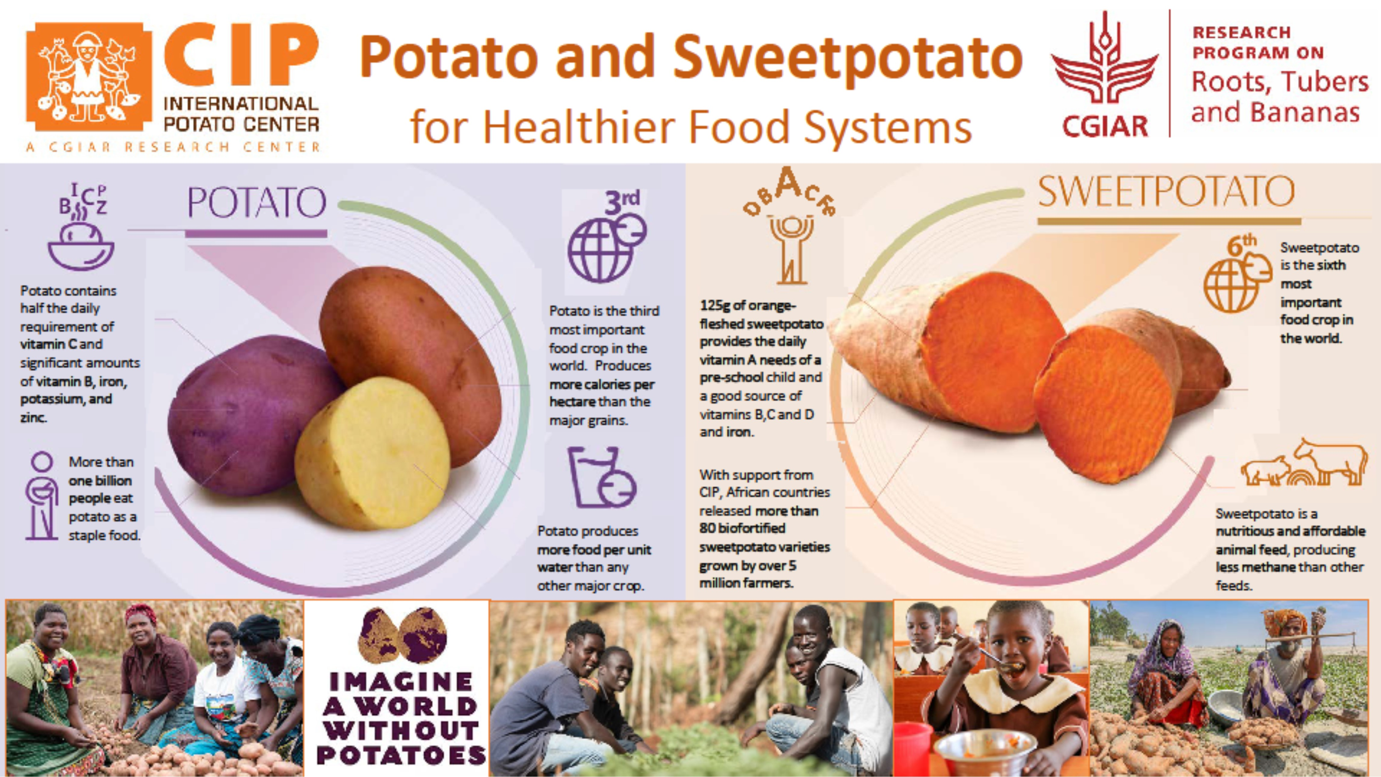 Potato and Sweetpotato for Healthier Food Systems