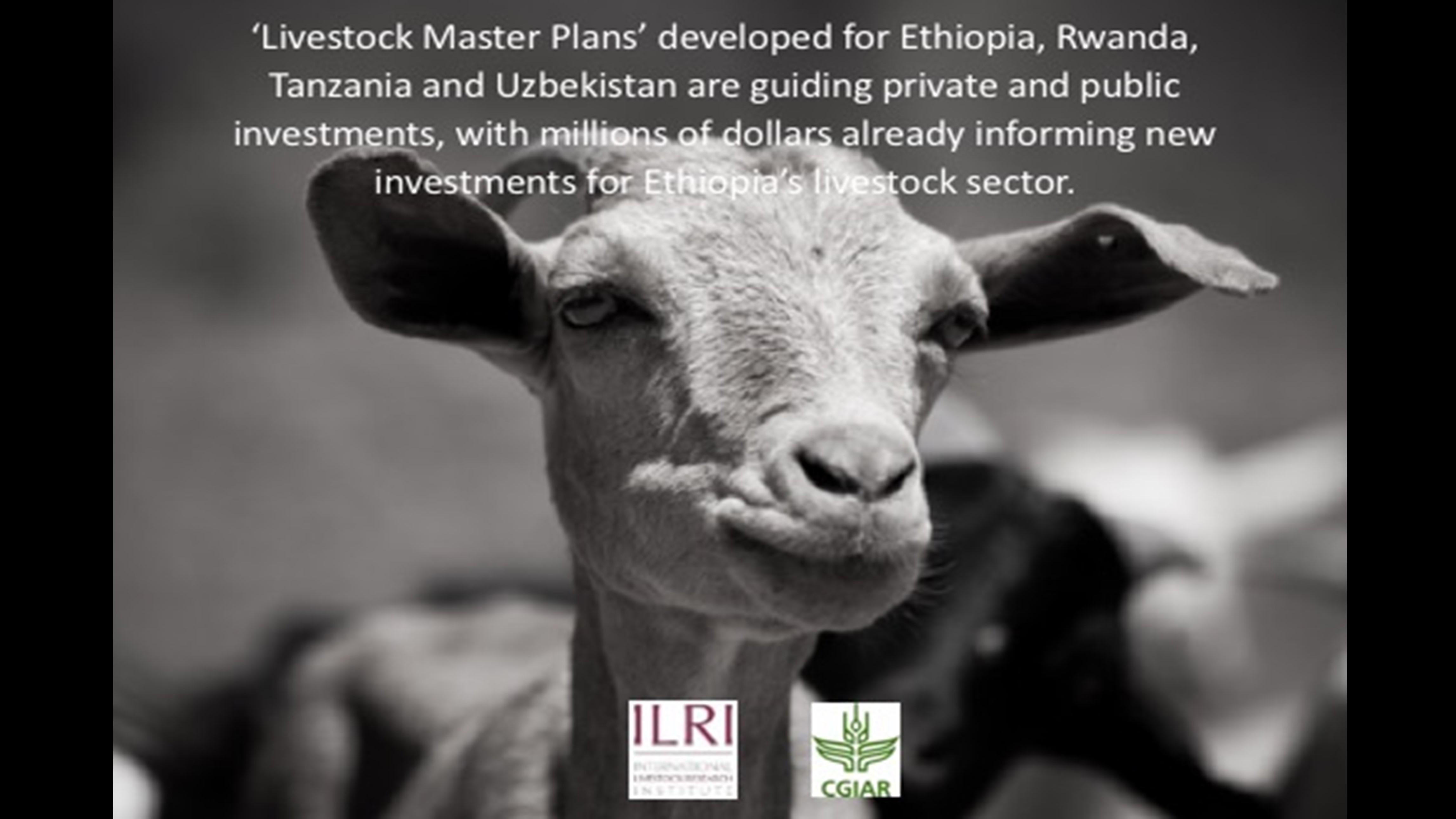 Livestock Master Plans