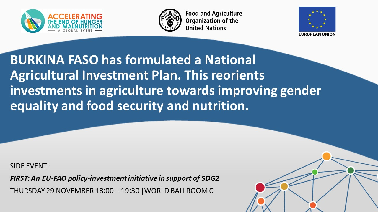 BURKINA FASO has formulated a National Agricultural Investment Plan. This reorients investments in agriculture towards improving gender equality and food security and nutrition