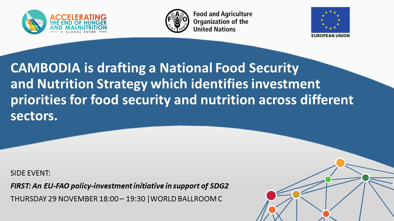 CAMBODIA is drafting a National Food Security and Nutrition Strategy which identifies investment priorities for food security and nutrition across different sectors