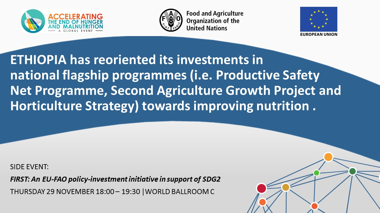 ETHIOPIA has reoriented its investments in national flagship programmes (i.e. Productive Safety Net Programme, Second Agriculture Growth Project and Horticulture Strategy) towards improving nutrition