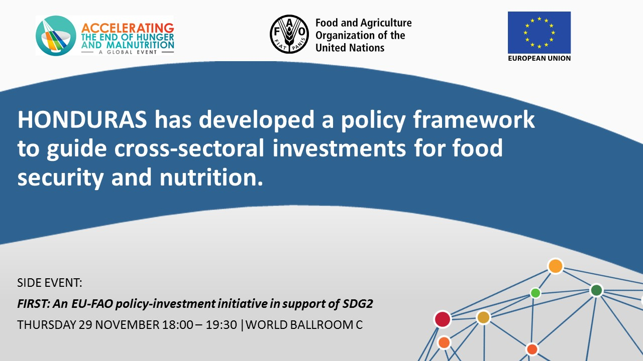 HONDURAS has developed a policy frameworkto guide cross-sectoral investments for food security and nutrition