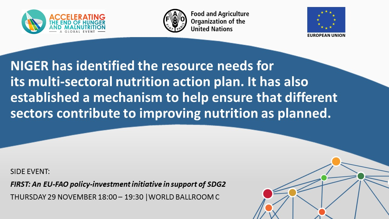 NIGER has identified the resource needs for its multi-sectoral nutrition action plan. It has also established a mechanism to help ensure that different sectors contribute to improving nutrition as planned